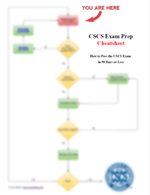 CSCS_Cheatsheet_blurred_final461x600