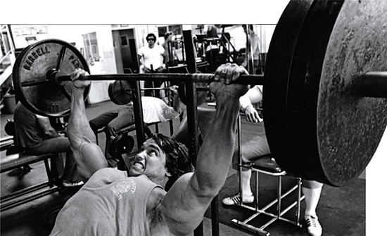 Arnold-incline-bench