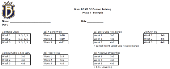 offseason hockey workout program pdf